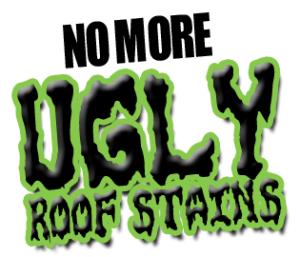ugly_roof_stains